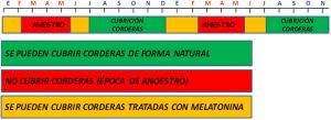 Calendario de cubrición